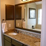 bronze bathroom vanity lights