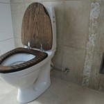 molded wood toilet seat