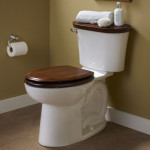 solid wood toilet seat