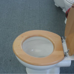 wooden white toilet seat