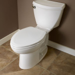 best elongated toilet seat