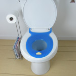 blue elongated toilet seat