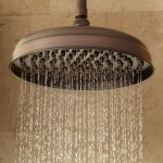 bronze rain shower head