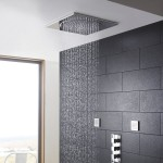 brushed nickel rain shower head