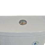 Smart Dual Flush Toilet