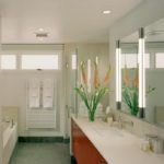 vertical vanity lighting