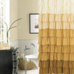 Bathtub Curtain Rod Height