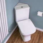 Corner Toilet