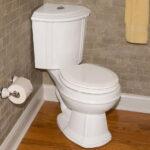 Superior Dual Flush Toilets