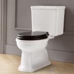 Traditional Bathroom Toilets