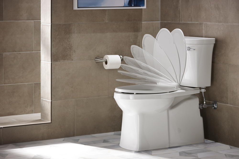 Quiet Close Elongated Toilet